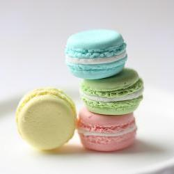 Miniature Food Jewelry - French Macaron Ring (Candy Drop Series) - Pastel Colours